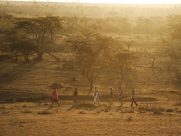 Family Amboseli & Masai Mara - gallery 5