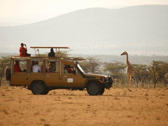 Family Amboseli & Masai Mara - gallery 6