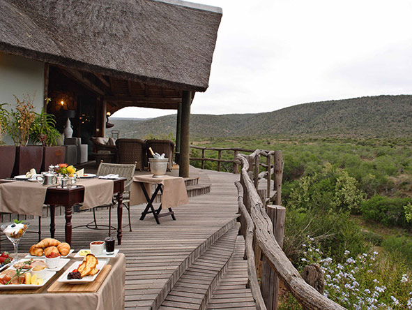 Kwandwe Great Fish River Lodge - gallery 10