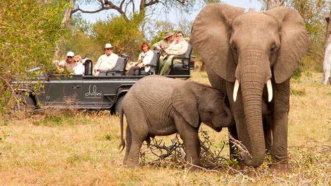 Where to go in March - Dulini in Sabi Sands