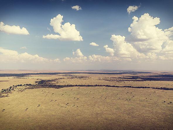 Romantic Kenya's Masai Mara - Gallery 4
