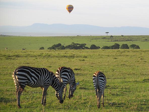 Romantic Kenya's Masai Mara - Gallery 6
