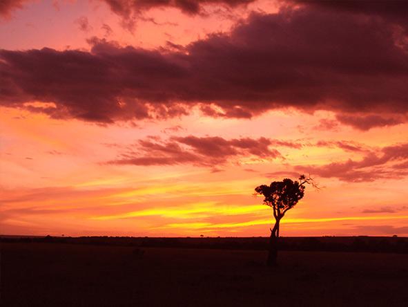 Romantic Kenya's Masai Mara - Gallery 8