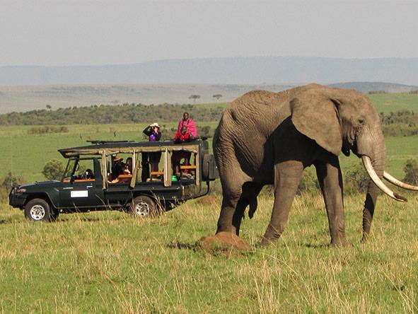 Romantic Kenya's Masai Mara - Gallery 10