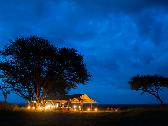 Serenget safari: luxury camping experience