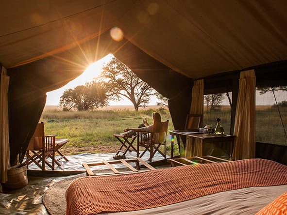Serengeti: Luxury camping