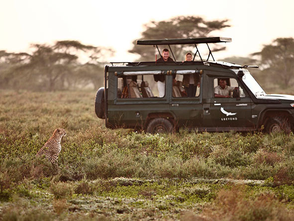 Safari vehicle in the Serengeti