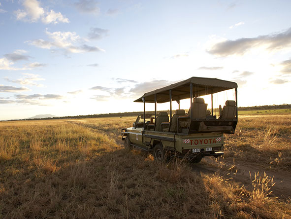 Oliver's Camp - Game drive