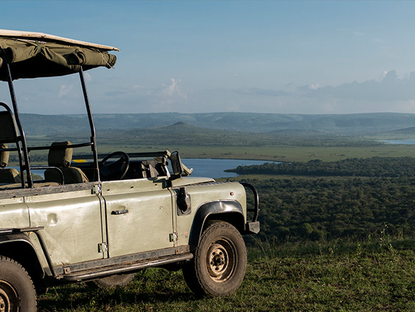 Mihingo Lodge - Game Drive