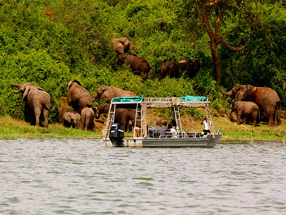 Mihingo Lodge - Boat safari