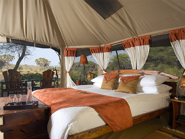 Elephant Bedroom Camp - Tent