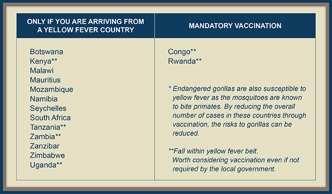 What Vaccinations Do I Need for Africa?
