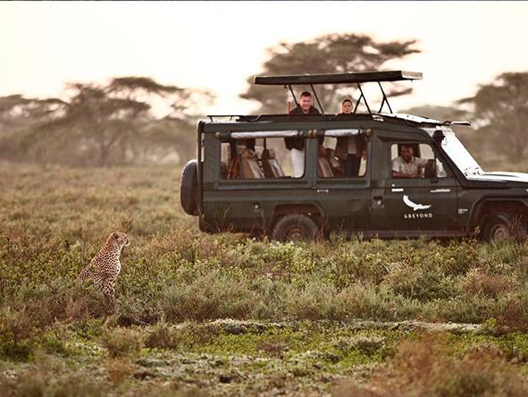 East Africa Safari - game viewing