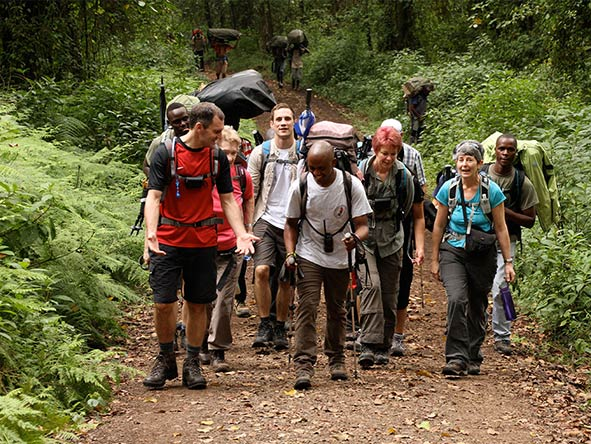 Private Luxury Machame Kilimanjaro Climb - Gallery 5