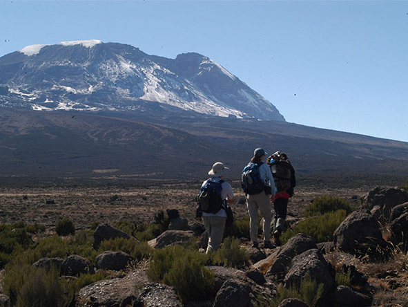 Private Luxury Machame Kilimanjaro Climb - Gallery 6