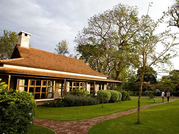 Private Luxury Machame Kilimanjaro Climb - Gallery 8