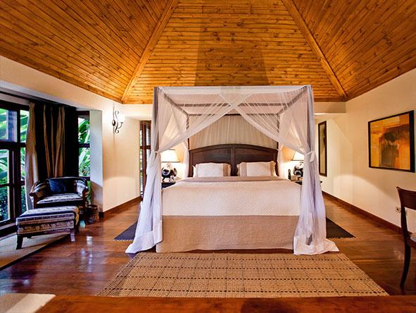 Private Luxury Machame Kilimanjaro Climb - Gallery 9