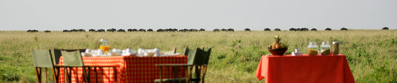 Kenya and Tanzania Safari Combinations