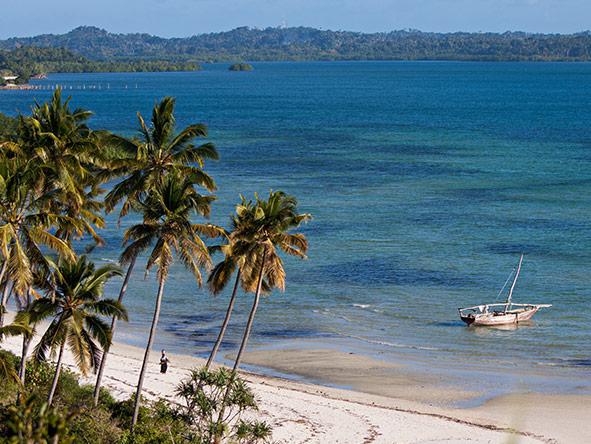 Romantic Tanzania's Selous & Pemba Island - gallery 5