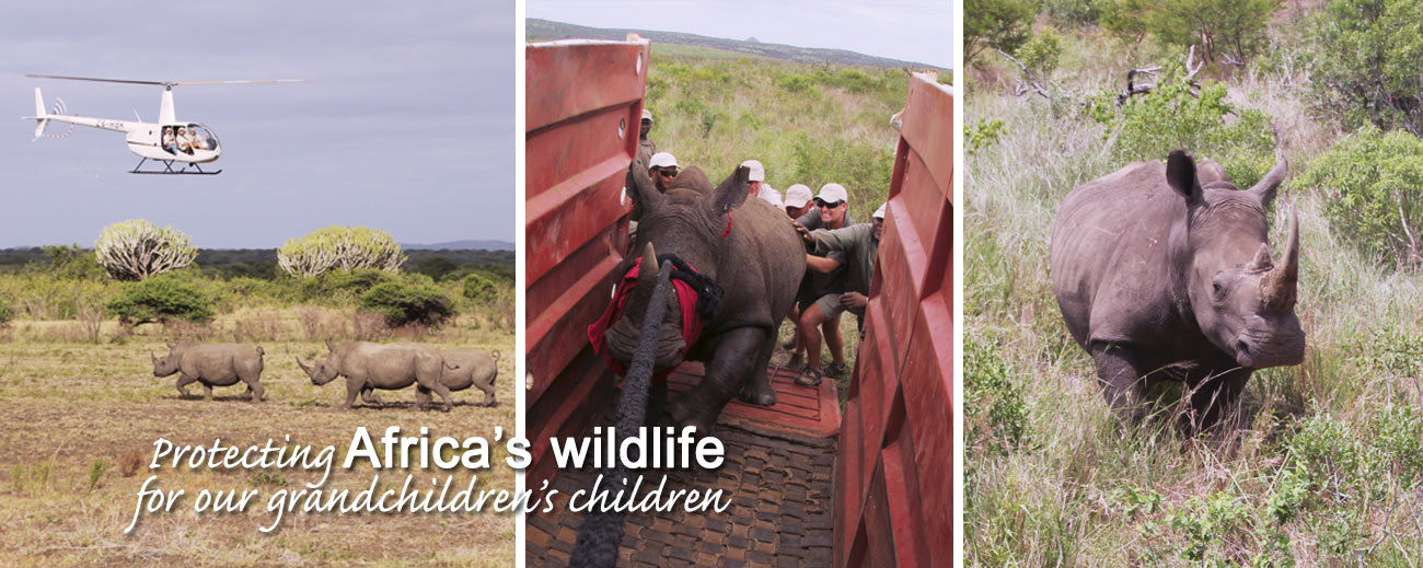 Go2Africa Gives Back - Rhinos Without Borders