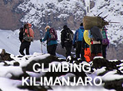 Experience Kilimanjaro