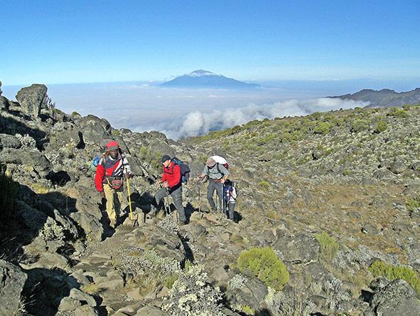 Adventurer Kilimanjaro Lemosho Crater via Stella Climb - gallery 1