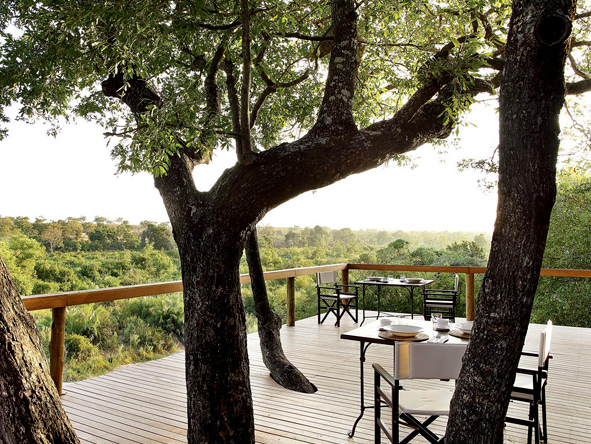 londolozi Tree camp - gallery 9