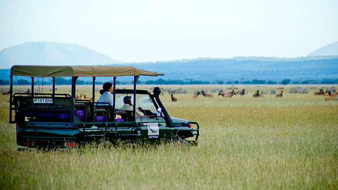 Beginner's Safari Guide to Tanzania - Serengeti