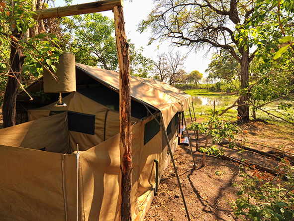 Khwai Tented Camp - gallery 8