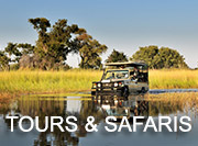 When to Go to Botswana - Tours & Safaris