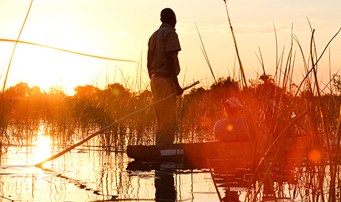 Botswana Safaris - African Safari Packages