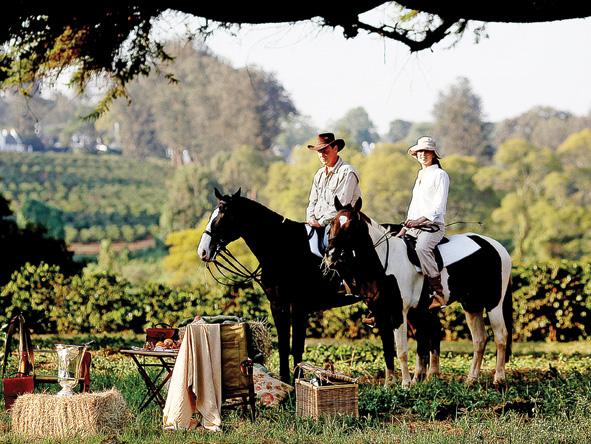 horseback riding, Ngorongoro