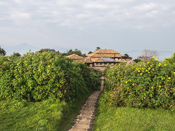 Volcanoes Virunga Lodge pathway