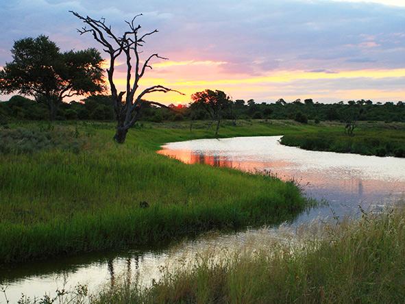 Motswari river