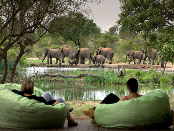 Tanda Tula - watering hole