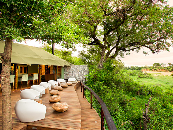Ngala Tented Camp - lush greenery