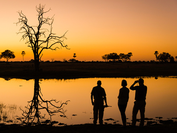 Linkwasha Camp - sunset
