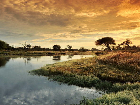 Hwange National Park - sunset