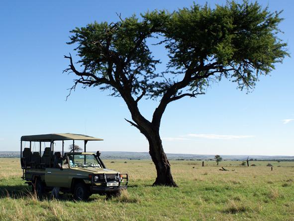 Game vehicle in the Serengeti