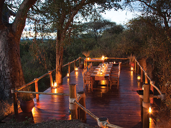 Tanzania safari, outdoor tree deck