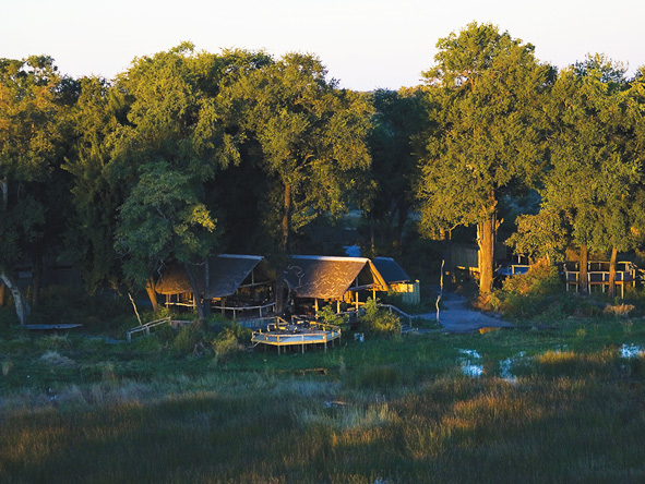Duba Plains Camp hidden amongst the trees