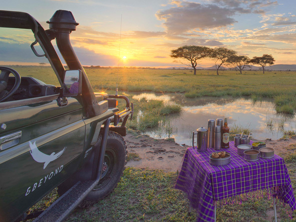 sunset drinks in the Serengeti