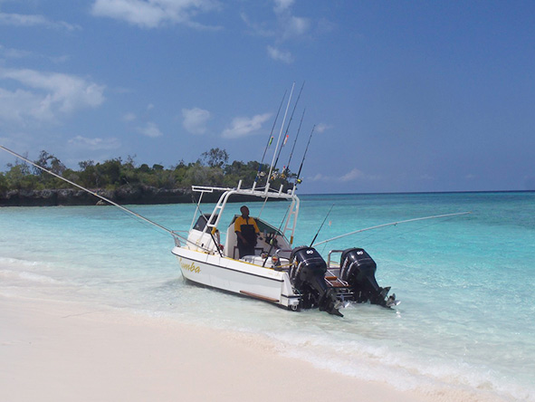 Fishing, Pemba Channel