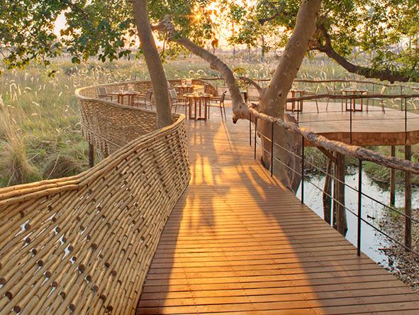 Tree-top deck, Sandibe Okavango Safari Lodge