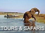 Chobe Safari - tours & safaris