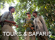 Congo Safari - tours & safaris