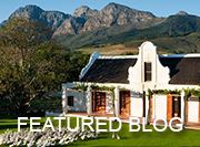 Cape Winelands - featured blog