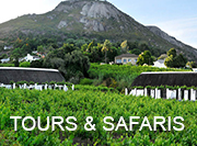 Cape Winelands - tours & safaris