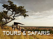Tanzania Safaris - tours & safaris