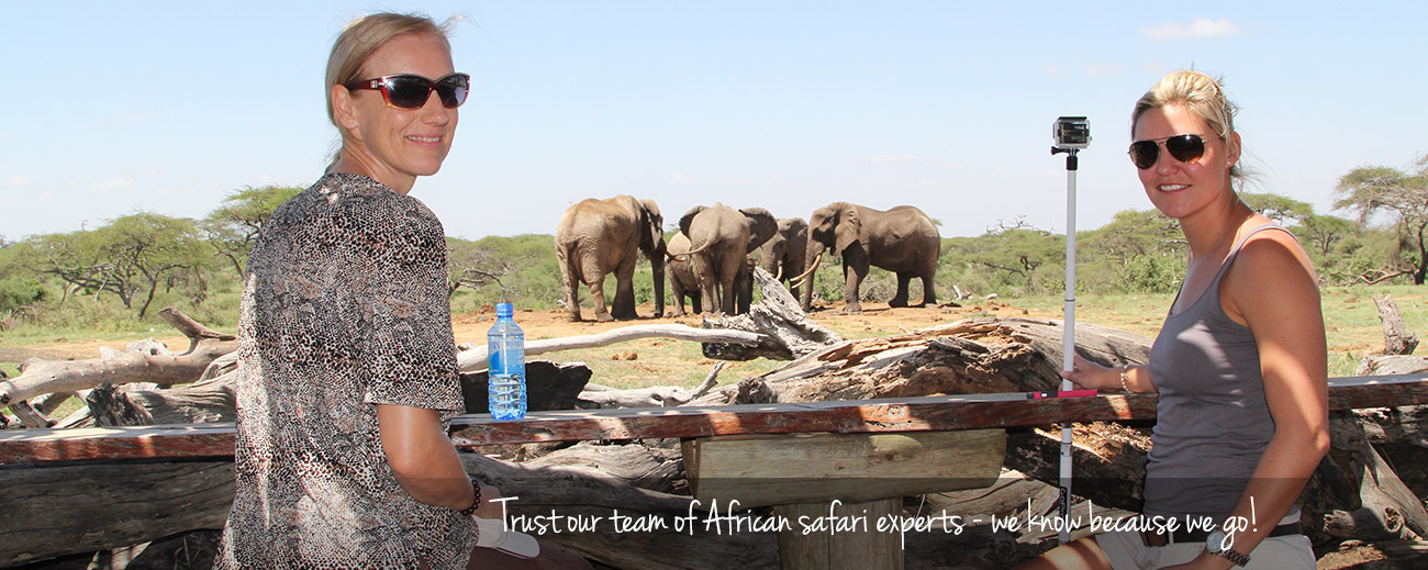 Best Laid Plans - Why an African Travel Agent is Best